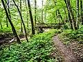 Chemin forestier et passerelle sur le Margraban. Lagrange.jpg