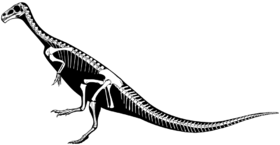 Chilesaurus skeleton.png