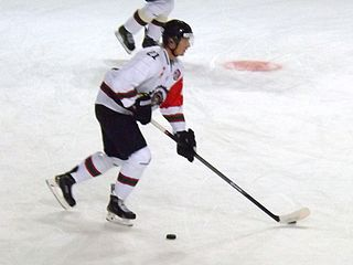 Christoffer Ehn Swedish ice hockey player