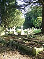 Churchyard, St Mary the Virgin, Vernham Dean - geograph.org.uk - 981015.jpg