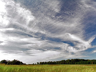 Cirrus cloud - A sky filled with many types of cirrus clouds accompanied by cirrocumulus upper centre and upper right