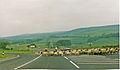 Clapham, North Yorkshire geograph-3475477-by-Ben-Brooksbank.jpg