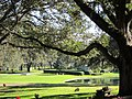 Clearwater,Florida,USA. - panoramio (52).jpg