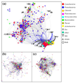 Co-occurrence networks of bacterial communities in an integrated lake-stream.png