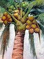 Coconut Tree Pastel.jpg