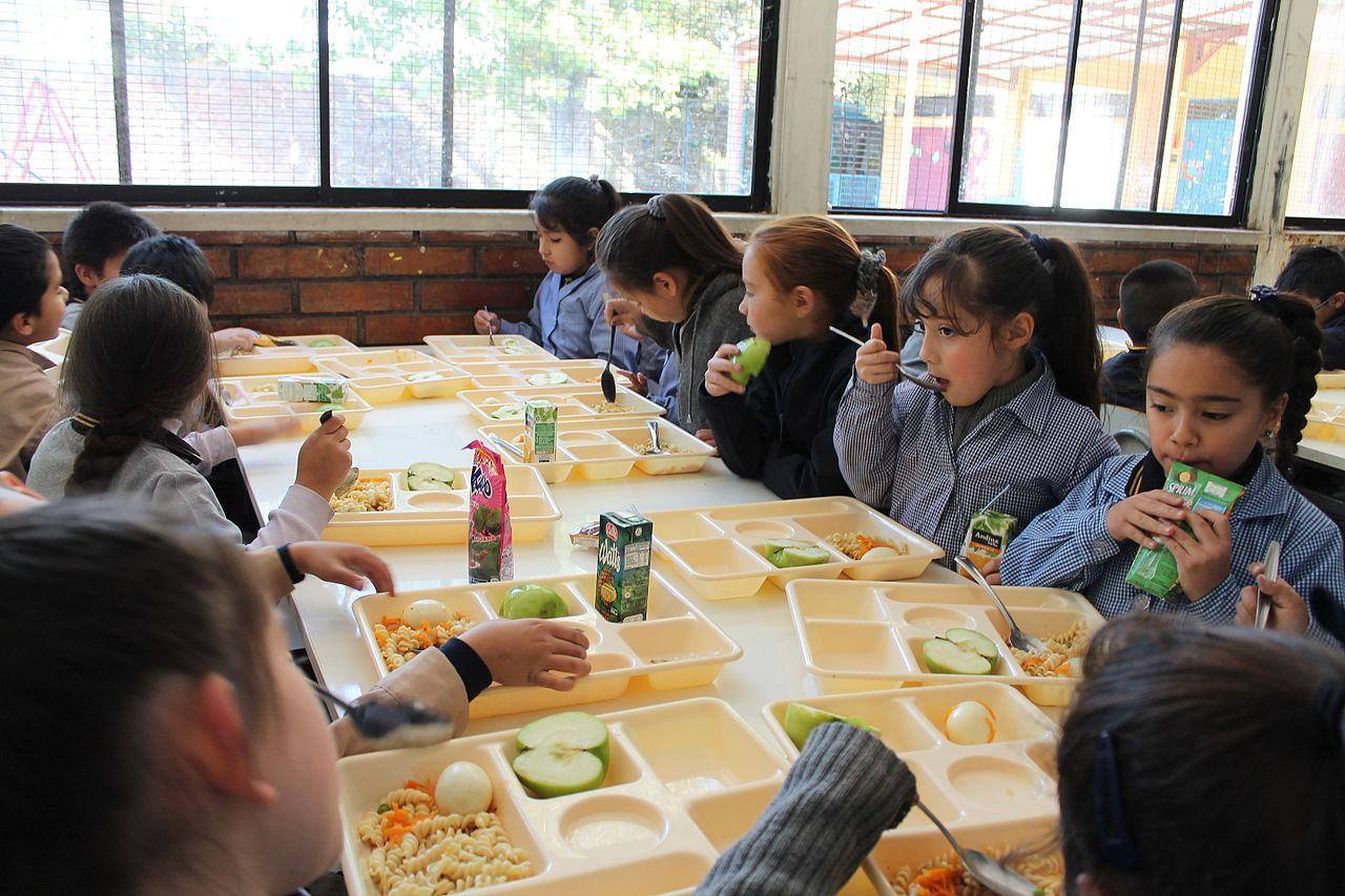 Illa verde - Comedores escolares xunta ...