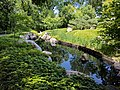 Como Park Zoo and Conservatory - 57.jpg