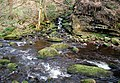 Cragg Brook, Spa Wood - geograph.org.uk - 390024.jpg