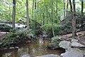 Creek in Paris Mountain State Park, June 2019.jpg