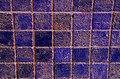 Cromatismi murari-22 (2693314070).jpg