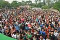 Crowd in HMM.jpg