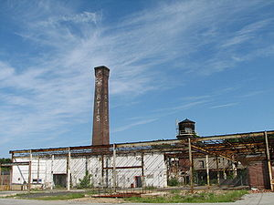 Curtis Paper Mill - The mill seen from the south in 2006