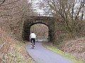 Cycle Path - geograph.org.uk - 352364.jpg