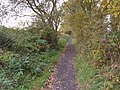 Cycle Trail (Former Scarborough to Whitby Railway) - geograph.org.uk - 1547128.jpg
