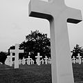 D-Day Cemetery in Normandie (2746186303).jpg