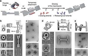 Rotaxane - Image: DNA origami rotaxanes