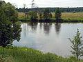 Daniušava river Viallja.JPG
