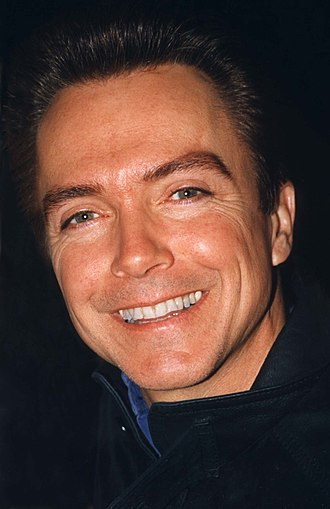 David Cassidy - Cassidy in the 1990s