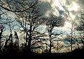 Daylight - panoramio.jpg