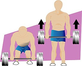 Deadlift illustration.jpg