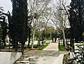 Deda Ena Park.jpg