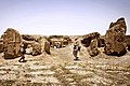 Desert Chamilions (9245578375).jpg