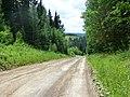 Dobryanskiy r-n, Permskiy kray, Russia - panoramio (206).jpg