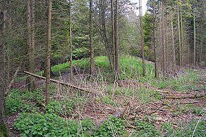 Dorset Cursus - Image: Dorset cursus long barrow