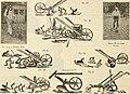 Dreer's garden book - seventy-fourth annual edition 1912 (1912) (14773831491).jpg