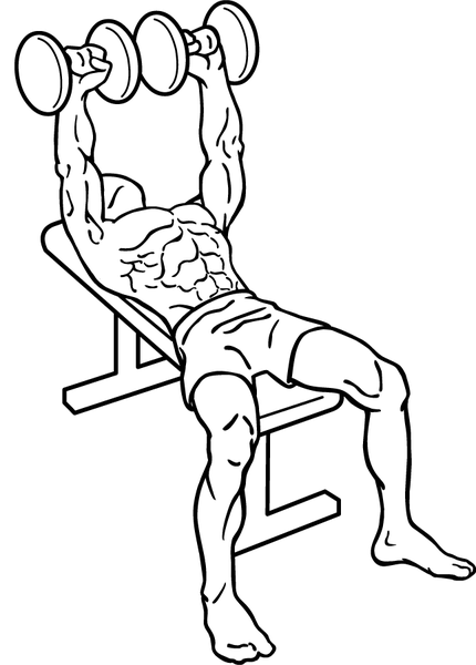 File:Dumbbell-bench-press-1.png