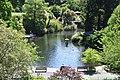 Dunedin Botanic Garden 09.jpg