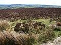 Dunkery Hill - geograph.org.uk - 1283094.jpg