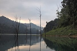 Early dawn on Cheow Lan Lake, Thailand.jpg