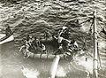 Eerste Wereldoorlog, zeeoorlog (3018264815).jpg