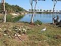 Egypt, Hurghada, 2014. - panoramio (17).jpg