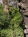 El Capricho - Jardín Artístico de la Alameda de Osuna - 43.jpg
