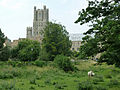Ely cathedral seen from Ely Park.JPG