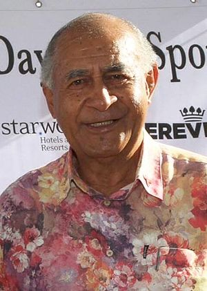 Vice-President of Fiji - Image: Epeli Nailatikau 2014