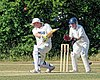 Epping CC v. Epping Foresters CC at Epping, Essex, England 35.jpg