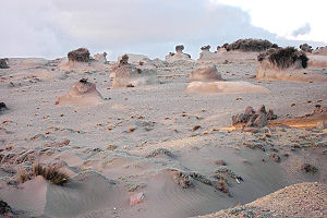 Aeolian processes - Wind erosion of soil at the foot of Chimborazo, Ecuador.