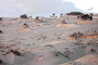 Aeolian processes - Wind erosion of soil at the foot of Chimborazo, Ecuador.