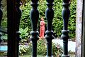 Estátua de São Francisco de Assis na área externa do Convento de São Francisco em Olinda.JPG