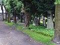 Evangelical Cemetery in Bielsko-Biała (Piłsudkiego) 3.JPG