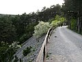 Ex strada ferrata,pista ciclabile,e passeggiata panoramica - panoramio.jpg