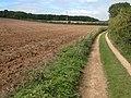 Farm track near Elwell - geograph.org.uk - 244641.jpg