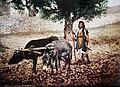 Farm worker in Palestine, by Bonfils.jpg