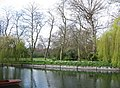 Fellows' Garden - Magdalene College - geograph.org.uk - 783986.jpg