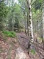 Felsenpfad Kirkel IMG 0600.JPG