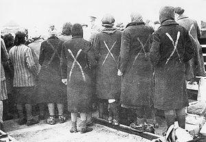 Female prisoners in Ravensbrück, the white cha...