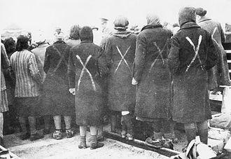 Hamburg Ravensbrück trials - Image: Female prisoners in Ravensbrück chalk marks show selection for transport